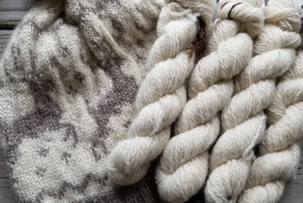 Fingering Angora Rabbit & Sheep Blend, Fawn – $28.00